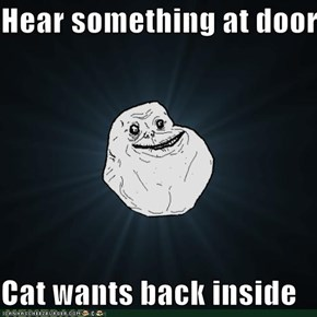 Hear something at door  Cat wants back inside