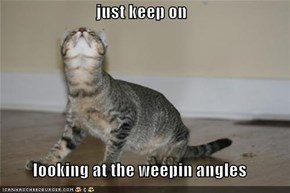 just keep on  looking at the weepin angles
