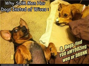 Why SUM Men Hav Dogs Insted of Wives :