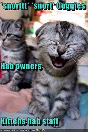*snorttt* *snort* Goggies Hab owners Kittehs hab staff
