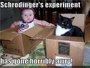 Schrodinger's experiment  has gone horribly awry!