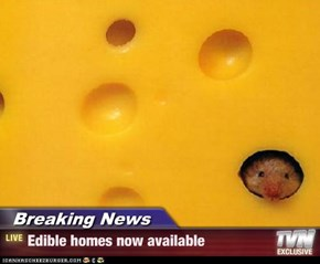 Breaking News - Edible homes now available
