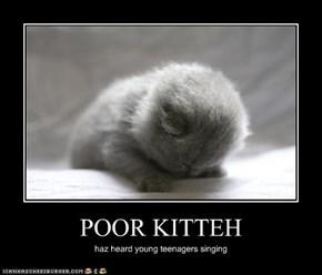 POOR KITTEH