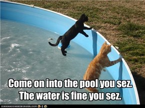 Come on into the pool you sez. The water is fine you sez.
