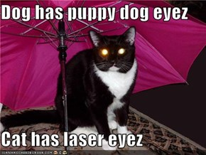 Dog has puppy dog eyez  Cat has laser eyez