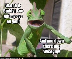 Watch it, Buddy!  I've got my eye on you!