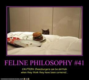 FELINE PHILOSOPHY #41