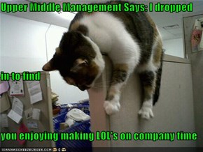 Upper Middle Management Says: I dropped in to find                                             you enjoying making LOL's on company time