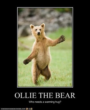 OLLIE THE BEAR
