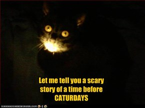 Let me tell you a scary story of a time before CATURDAYS