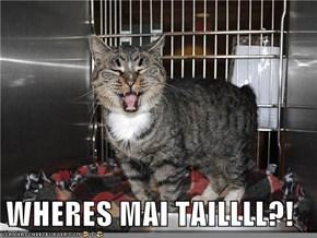 WHERES MAI TAILLLL?!