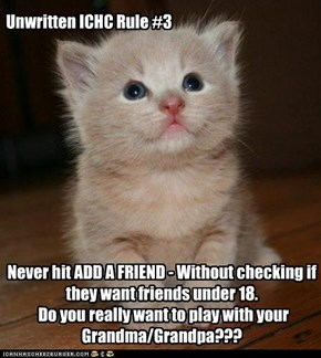 Things A New Kitteh Should Know 3