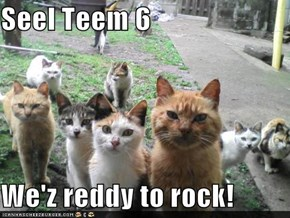 Seel Teem 6  We'z reddy to rock!