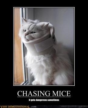 CHASING MICE