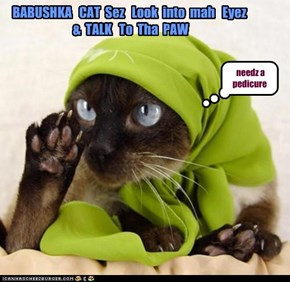 BABUSHKA   CAT  Sez   Look  into  mah   Eyez   &  TALK   To  Tha  PAW