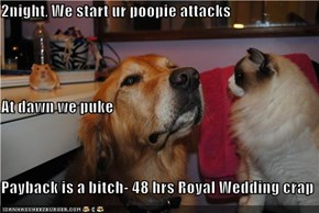 2night, We start ur poopie attacks At dawn we puke Payback is a bitch- 48 hrs Royal Wedding crap