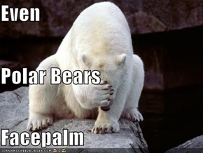 Even Polar Bears Facepalm