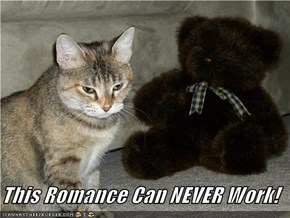 This Romance Can NEVER Work!