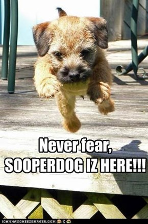 Never fear, SOOPERDOG IZ HERE!!!