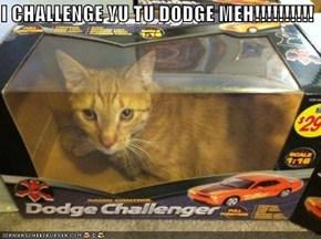 I CHALLENGE YU TU DODGE MEH!!!!!!!!!!