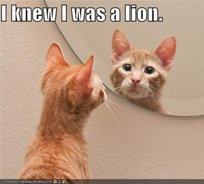 I knew I was a lion.