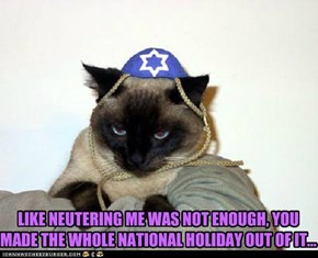 LIKE NEUTERING ME WAS NOT ENOUGH, YOU MADE THE WHOLE NATIONAL HOLIDAY OUT OF IT...