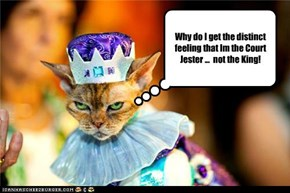 Why do I get the distinct feeling that Im the Court Jester ...  not the King!