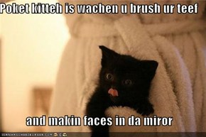 Poket kitteh is wachen u brush ur teef  and makin faces in da miror