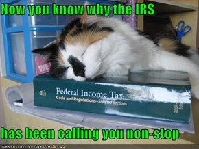 Now you know why the IRS  has been calling you non-stop
