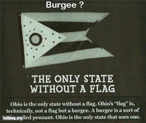 Ohio, only state without a flag..