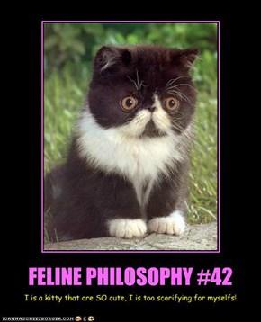 FELINE PHILOSOPHY #42