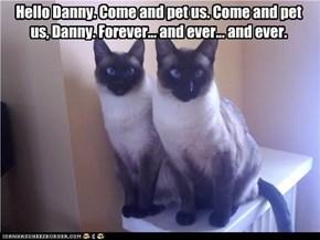 Hello Danny.
