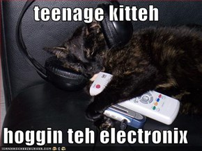 teenage kitteh  hoggin teh electronix