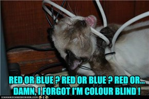 RED OR BLUE ? RED OR BLUE ? RED OR... DAMN, I FORGOT I'M COLOUR BLIND !