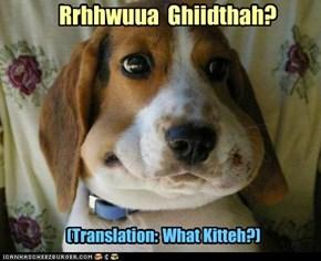 Rrhhwuua  Ghiidthah?