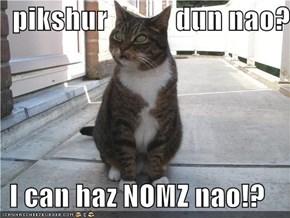 pikshur            dun nao?  I can haz NOMZ nao!?