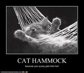 CAT HAMMOCK