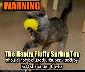 the Happy Fulffy Spring Toy..