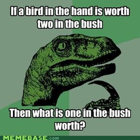 Half-Birds