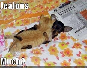 Jealous  Much?