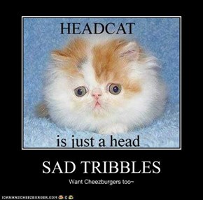 SAD TRIBBLES