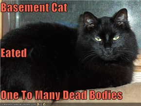 Basement Cat Eated One To Many Dead Bodies