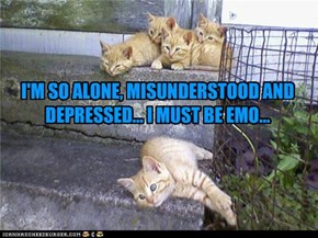 I'M SO ALONE, MISUNDERSTOOD AND DEPRESSED... I MUST BE EMO...