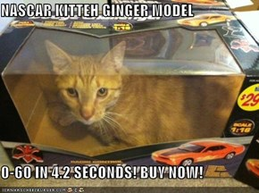 NASCAR KITTEH GINGER MODEL  0-60 IN 4.2 SECONDS! BUY NOW!