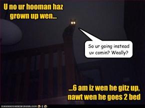 Mah hooman iz a big boy nao...