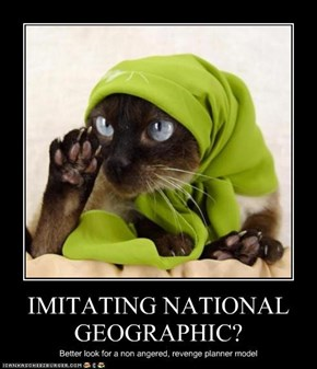 IMITATING NATIONAL GEOGRAPHIC?