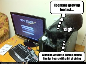 Hoomans grow up too fast....