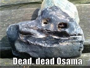 Dead, dead Osama