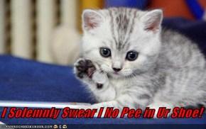 I Solemnly Swear I No Pee in Ur Shoe!