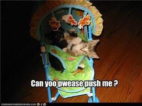 Kitten Stroller